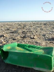 Plástico_playa13