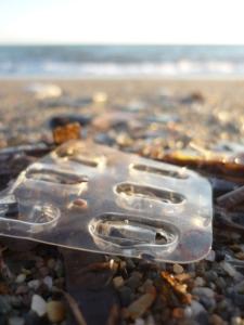 Plástico_playa9