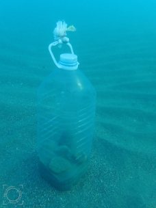 Botella plástico fondo playa
