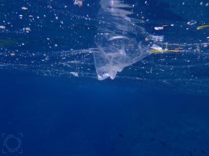 Plástico flotando mar