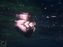Calzado a la deriva