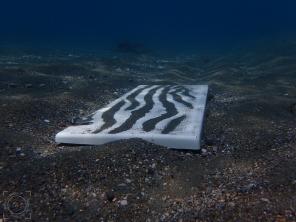 Puerta armario fondo mar