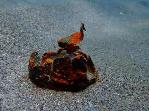 Lata aluminio fondo mar