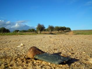 Cartucho munición Vía pecuaria