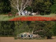 Deterioro del medio rural Vega río Tajo may2007 vs abr2017 Aranjuez