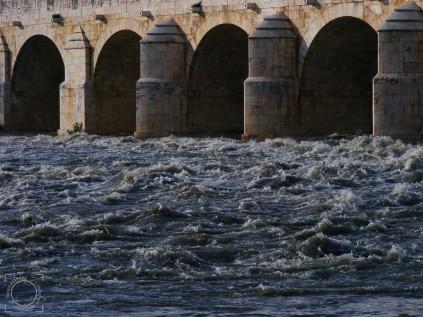 Crecida río Jarama 2mar2013