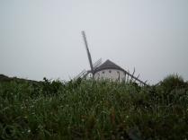 Rocío y niebla en Molinos Campo Criptana