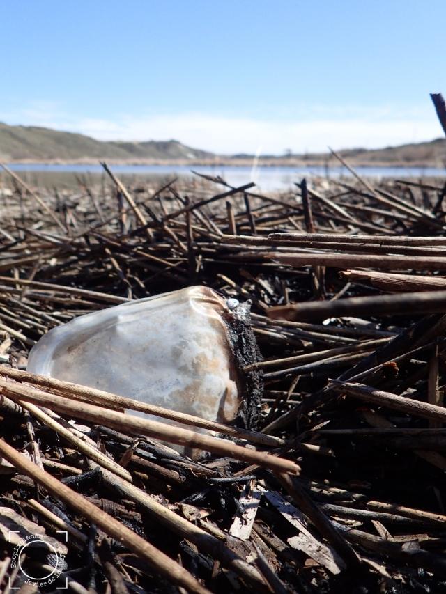 Resto plástico quemado