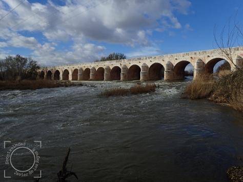Río Jarama a su paso por Puente Largo